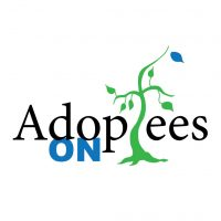 Adoptees On Podcast